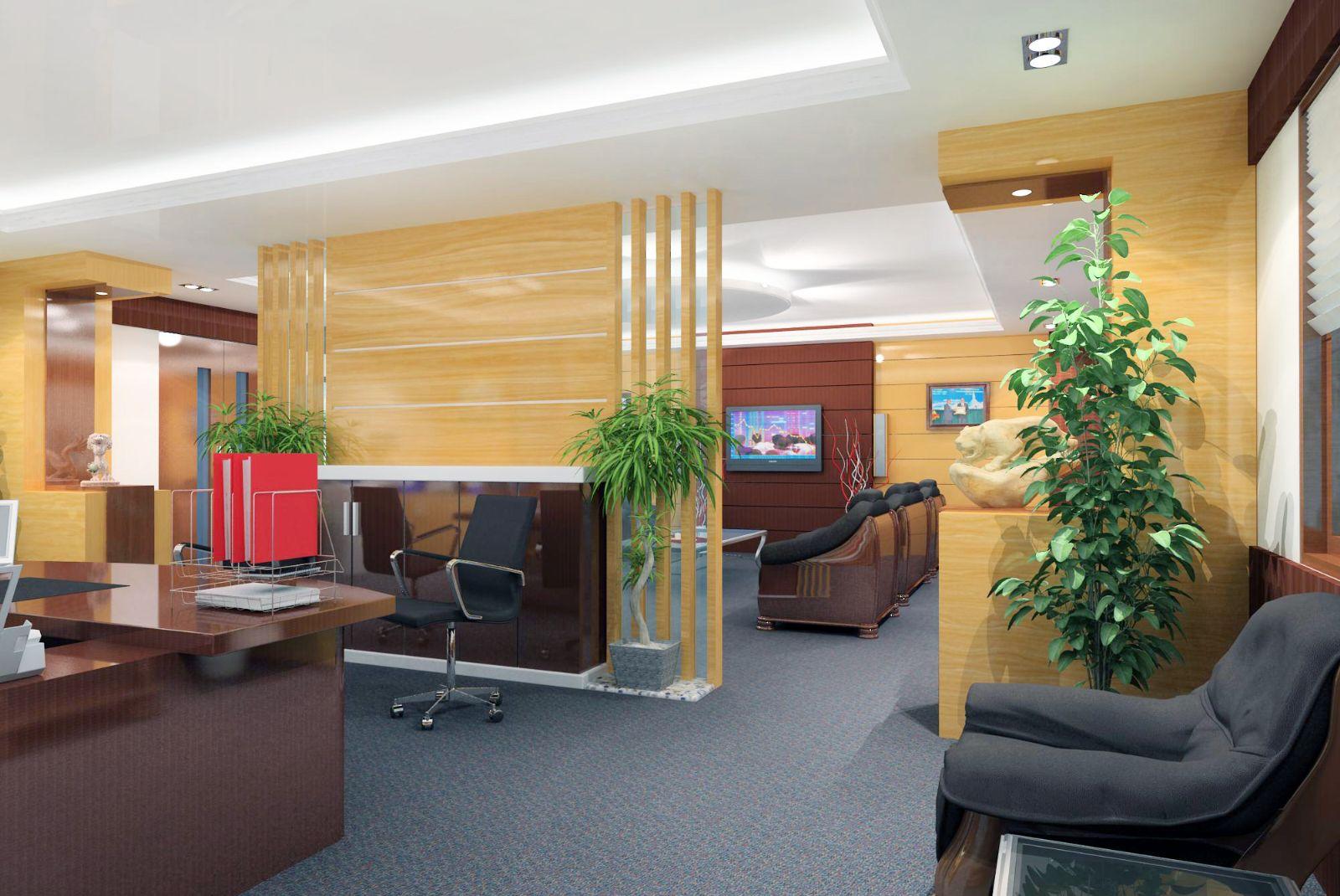Kết quả hình ảnh cho cây cảnh văn phòng làm việc